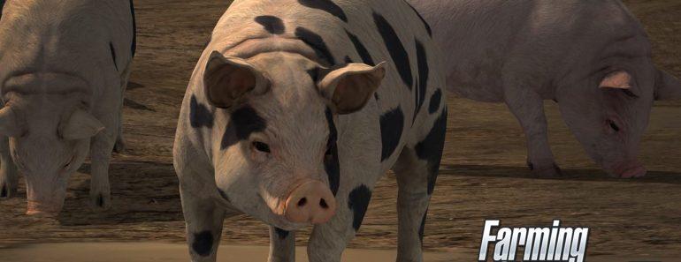 farming-simulator-17-gameplay-2-tending-to-animals