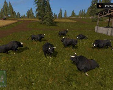 black-bull_4-png