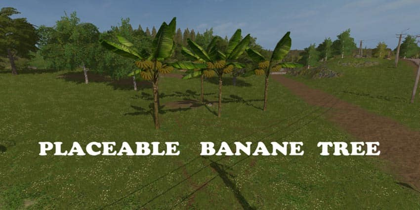 Placeable Banana Tree V 1.0 [MP]